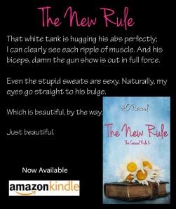 NR Blurb 5